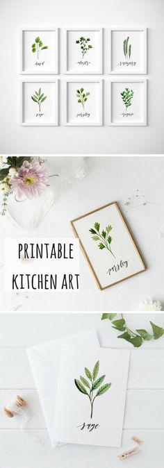 Fresh, pretty kitchen decor. Set of 6 herb printables. Watercolor herb wall signs. #etsy #handmade #printable #affiliate