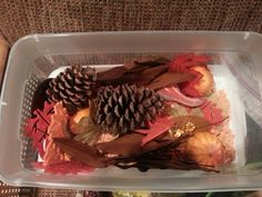 Fall themed sensory box to elicit memory with Dementia/Alzheimer's patients. Includes 3 different types of textured leaves and cinnamon scented pinecones.