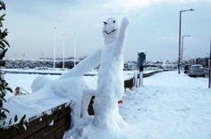Goodbye Winter http://www.drlima.net