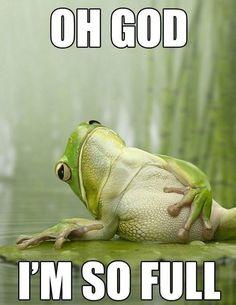 Full Frog.