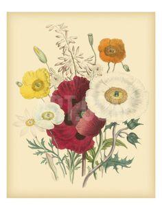 Garden Bouquet II Art Print by Jane W. Loudon at Art.com