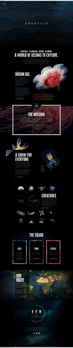Aquatilis Website // Beautiful design with parallax scrolling and animation. Loads slowly, though.