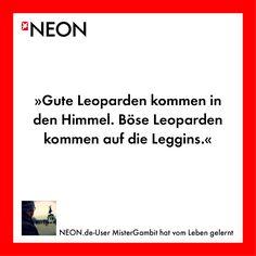 NEON.de-User MisterGambit hat vom Leben gelernt
