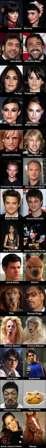 Similarities...