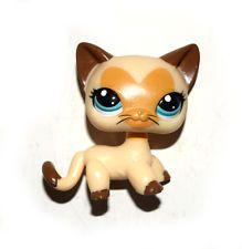 Littlest Pet Shop Animais Amarelo Marrom Gatinho Gato Cabelo Curto Boneco Boneca Brinquedo Criança