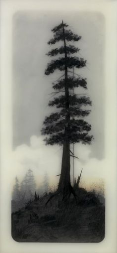 After a long night wrestling with bloodshot eyes, I finally got a respite looking upon the tranquil yet striking work of Los Angeles based mixed media artist Brooks Shane Salzwedel. Salzwedel uses graphite, tape, and resin to produce these. Unique Drawings, Cool Drawings, Kunst Online, Graphic Projects, Encaustic Painting, Art Plastique, Tree Art, Printmaking, Cool Art