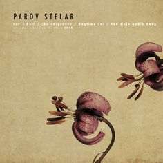 I love Parov Stelar, check out his album Coco Part 1...it will change your life
