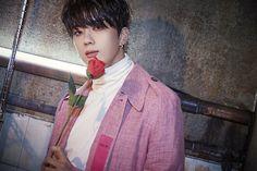 Youngjae, ROSE B.A.P ~F I G H T I N G~ U(⁎•ㅅ•)U / *:・゚✧ ☆