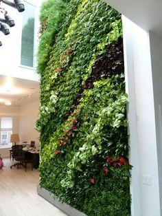 вертикальное озеленение #verticalgarden #greenwall #livingwall #GreenWall #minigarden #фитокартины #фитостены