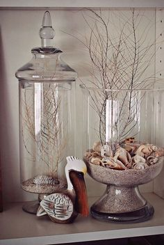 Jar Decoration Ideas – 5 Steps in Decorating Jar Lid Displays for shell and coral I collected while in vacation. decorating-misc The post Jar Decoration Ideas – 5 Steps in Decorating Jar Lid appeared first on Womans Dreams. Glass Jars With Lids, Jar Lids, Seashell Crafts, Beach Crafts, Jar Decoration Ideas, Jars Decor, Display Ideas, Decorating Ideas, Decor Ideas