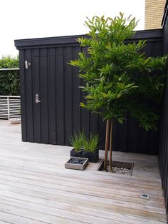 Deck with a tree, black wall outdoor spaces trädgård träd, t