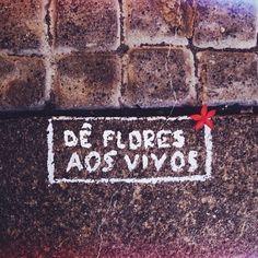 .... porque os mortos não veem as cores, não sentem o cheiro, não percebem as texturas e nem expressam as emoções que as flores proporcionam.