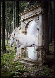 Unicorn going through portal.