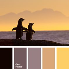 Desert, sunset, sand are the first associations with this palette. It can be…