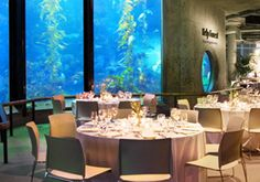 Pricing for reception/rehearsal dinner at Monterey Bay Aquarium