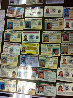 23 Best Fake ID images in 2012 | Birth certificate, Id scanner, Passport