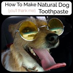 Making a natural toothpaste for your dog is a great way to keep his/her teeth clean in a safe way! Great idea. Make this DIY dog toothpaste, all instructions are there for you!
