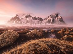 Rose-tinted landscape at sunset at Vestrahorn mountain in Iceland