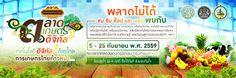 Graphic design : Beam Ratta / Project : Bill Board ตลาดเกษตรดิจิทัล 2559 @ ตลาดคลองผดุงกรุงเกษม จ.กรุงเทพมหานคร Thai Design, Powerpoint Background Design, Photography Challenge, Thai Style, Advertising Design, Design Reference, Banner, Graphic Design, Projects