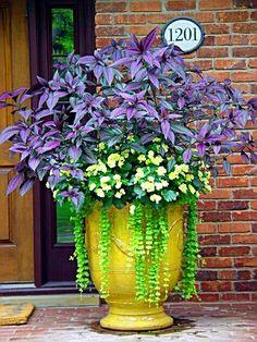 Would love this on the front porch Garden Container, Container Flowers, Garden Urns, Garden Planters, Diy Garden, Garden Ideas, Shade Garden, Lawn And Garden, Garden Landscaping