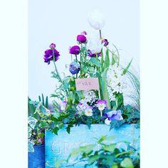 Kvällsbloggat  #bloggblomsterverkstad #blomsterverkstad #blogg #bloggare #blommor #trädgårdsblogg #instablommor #instaflowers #flowers #spring #simplelife #beautiful #vårblommor #vårkruka #vårplantering