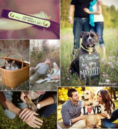 Blog de los detalles de tu boda   Mascotas en tu boda   http://losdetallesdetuboda.com/blog