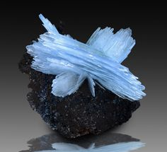 International Minerals # 12 - Anton Watzl Minerals
