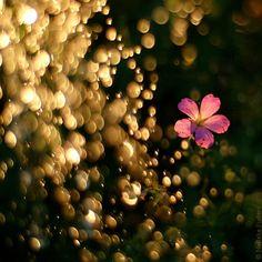 Golden Rain by Nelleke Pieters on deviantART