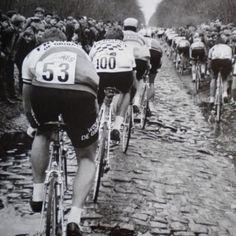 Parigi-Roubaix 1969, 13 aprile. Foresta di Arenberg