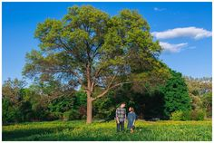 A WordPress Site | Cantigny Engagement Shoot- Wheaton, IL Engagement and Wedding Photographer