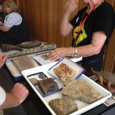 Hands on fossil science at Australian Museum