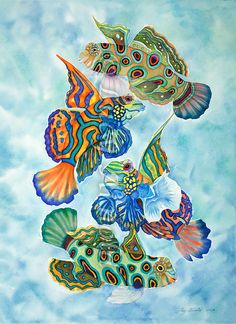 30x22 watercolor Dragonets,such asthese mandarin fish, are wildly, vividly patterned with colorful stripes and spots when seen up close. These extremely beautiful little fish are found in warm, tropical waters of the Indo-Pacific region of…