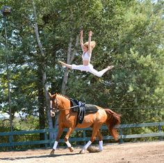 vaulting. one of the most bad-ass equestrian sports.