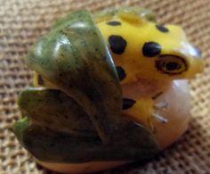 Wounaan Embera Poison Dart Frog Tagua Carving-Panama 16021108L
