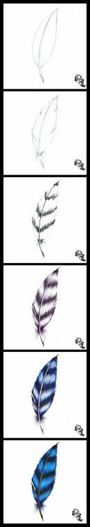 Step by step feather