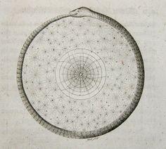 MG — (via ancient-serpent, sealmaiden)