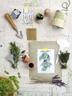 kruiden #herbs #moodboard styling Laura gommans