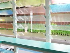My dream beach house down the coast has these louvers from Sea Circus Bali by Dawson Collector Retro Beach House, Dream Beach Houses, Louvre Windows, Rest House, Bathroom Windows, Pastel Colors, Pastels, Mid Century Design, Southern Style