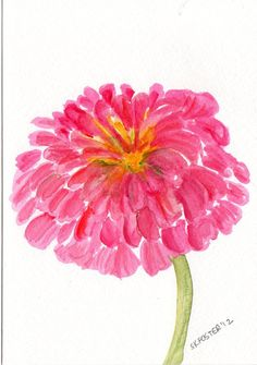 Pink Zinnia Painting Original  watercolor by SharonFosterArt, $18.00