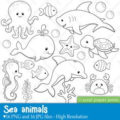 Sea Animals Digital Stamps Clipart di pixelpaperprints su Etsy