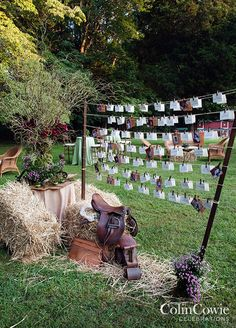 Instead of being arranged on a table, place cards and photos of the couple are attached to strands of twine. Wedding Decorations, Purple Wedding, Country Wedding