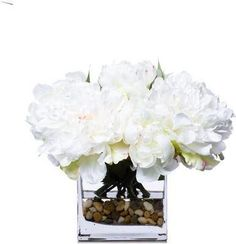 White Peonies In Square Waterlike Faux Flower Arrangements, White Peonies, Site Design, Faux Flowers, Wallpaper, Fake Flowers, Wallpapers, Website Designs, Yard Design