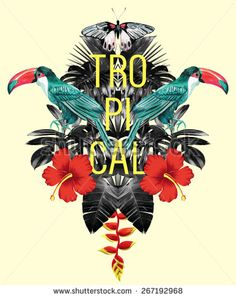toucan, hibiscus and palm leaves tropical mirror illustration