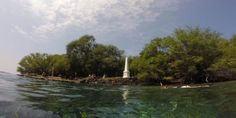 Aloha Friday Photo: Snorkeling at Captain Cook Monument - Go Visit Hawaii