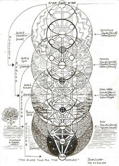 (not my caption) The Tree of Life, also called Jacob's Ladder. This is a Kabbalistic image but interestingly, the spheres in the tree overlay the flower of life 'sacred' geometric form and therefore represents a Primal Pattern of Nature.
