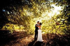 Winery country wedding