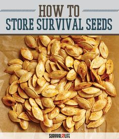 Survival Seeds Storing Techniques | Gardening & Self Sufficiency Tips & Ideas For Emergency Preparedness by Survival Life at http://survivallife.com/2015/11/10/survival-seeds-storing/