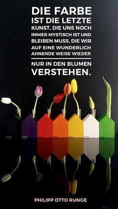 Zitat: Philipp Otto Runge Farben und Blumen #farbe #blumen #häuschen #design #dekoration #frühling #minimalismus #bunt #tulpen #zitat