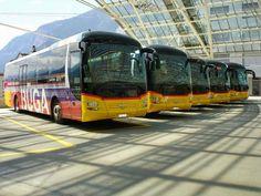 Post Bus, Chur, Busse, Coaches, Transportation, Poster, Public, Autos, Swiss Guard