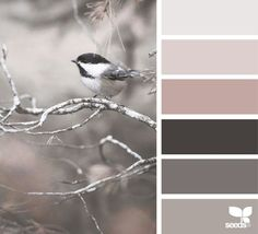 perched tones | design seeds | Bloglovin'